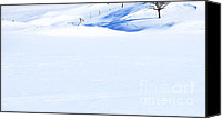 Canadian Landscape Canvas Prints - Snow Diamonds Canvas Print by Theresa Tahara