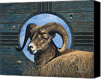 Goat Canvas Prints - Zia Ram Canvas Print by Ricardo Chavez-Mendez