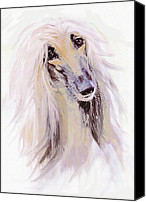 Hound Canvas Prints - Afghan Hound Canvas Print by Jane Schnetlage