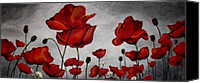 Poppies Canvas Prints - Gray Skies  Canvas Print by Vickie Warner