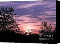 Featured Pyrography Canvas Prints - Sunset  Canvas Print by Frank Conrad