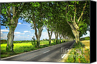 Lined Canvas Prints - French country road Canvas Print by Elena Elisseeva