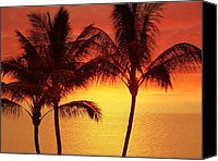 Tropical Photographs Canvas Prints - Red Sunset. Canvas Print by Athala Carole Bruckner