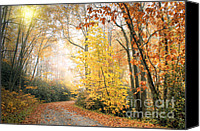 Morning Special Promotions - Autumn Morning Canvas Print by Lynn Whitt