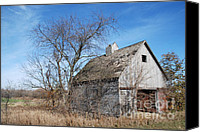 Decaying Canvas Prints - An old rundown abandoned wooden barn under a blue sky in midwestern Illinois USA Canvas Print by Paul Velgos
