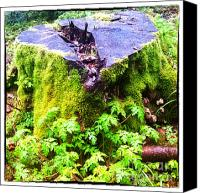 Color Canvas Prints - An old stump of a tree in the green spring forest Canvas Print by Regina Koch