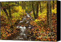 Autumn Leaves Canvas Prints - Autumn Steam Canvas Print by Mike  Dawson