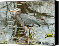 Ken Williams Canvas Prints - Blue Heron 2 Canvas Print by Ken Williams