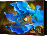 Poppy Digital Art Canvas Prints - Blue Himalayan Poppy Canvas Print by Julie Palencia