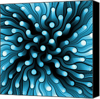 Sea Animals Mixed Media Canvas Prints - Blue Sea Anemone Canvas Print by Anastasiya Malakhova