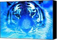 Nick Gustafson Canvas Prints - Blue Tiger Canvas Print by Nick Gustafson