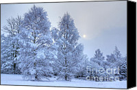 David Birchall Canvas Prints - Blue Winter Canvas Print by David Birchall