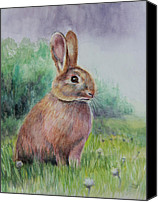 Easter Bunny Painting Canvas Prints - Bright Eyes Canvas Print by Susan Jenkins