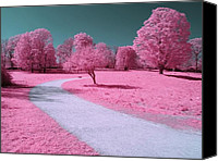 Grass Special Promotions - Bubblegum Bliss Canvas Print by Luke Moore