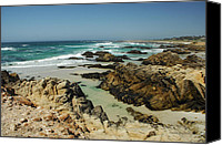 Donna Blackhall Canvas Prints - California Coast Canvas Print by Donna Blackhall