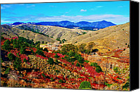 Travel Photo Special Promotions - California Hills Canvas Print by Aidan Moran