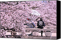 Featured Tapestries - Textiles Canvas Prints - Cherry Blossoms Road Canvas Print by Jinjer Templer