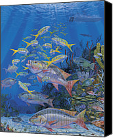 Grouper  Canvas Prints - Chum line Canvas Print by Carey Chen