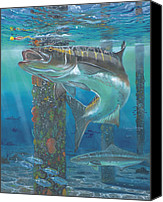 Grouper  Canvas Prints - Cobia Strike Canvas Print by Carey Chen