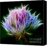 Fireworks Digital Art Canvas Prints - Color Burst Canvas Print by Adam Romanowicz