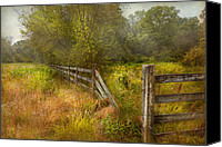 Fences Canvas Prints - Country - Landscape - Lazy meadows Canvas Print by Mike Savad