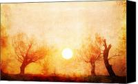 Creepy Painting Canvas Prints - Creepy trees at sunset Canvas Print by Sasa Prudkov