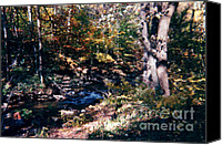 Photos Of Autumn Canvas Prints - Cunningham Park  Canvas Print by Ruth  Housley