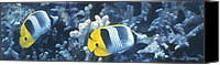 Guy Harvey Canvas Prints - Double Saddleback Butterflyfish Canvas Print by Randall Scott
