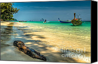 Thai Canvas Prints - Driftwood Canvas Print by Adrian Evans