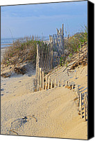 Sand Fences Canvas Prints - Dune Protector Canvas Print by Jamie Pattison
