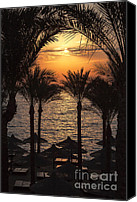 Daybreak Canvas Prints - Egypt sunrise Canvas Print by Jane Rix