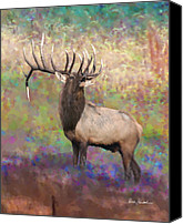 Elk Canvas Prints - Elk Art - Monarch Canvas Print by Elk Artist Dale Kunkel