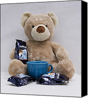 Toy Photo Special Promotions - Espresso Bear Canvas Print by William Patrick