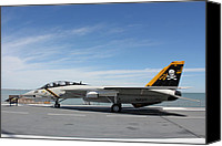 Airplane Special Promotions - F-14 Tomcat Canvas Print by Rod Andress