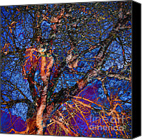 Fantasy Photo Canvas Prints - Fairies Below Canvas Print by Meghan at  FireBonnet Designs
