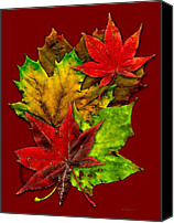Abstract Art Canvas Prints - Fall Leaves Canvas Print by Mario  Perez