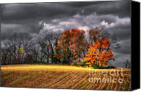 Lois Bryan Canvas Prints - Falling Into Winter Canvas Print by Lois Bryan