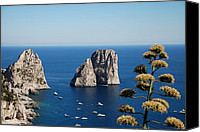Road Travel Special Promotions - Faraglioni in Capri Canvas Print by Dany  Lison Photography