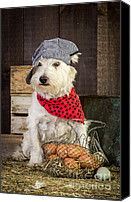 Bandana Canvas Prints - Farmer Dog Canvas Print by Edward Fielding