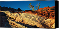 Valley Of Fire Canvas Prints - Fire Lines Canvas Print by Chad Dutson
