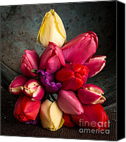 Fielding Canvas Prints - Fresh Spring Tulips Still Life Canvas Print by Edward Fielding