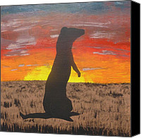 Black-footed Ferret Canvas Prints - Frettaluna The Ferret Canvas Print by Kansas Wilson
