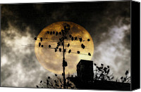 Roost Canvas Prints - Full Moon Roost Canvas Print by Bill Cannon