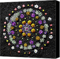 Joseph Duba Canvas Prints - Garden Mandala 2009 v.2 Canvas Print by Joseph Duba