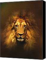 Lion Digital Art Canvas Prints - Golden King Canvas Print by Robert Foster