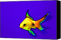 Fish Prints Canvas Prints - Goldfish Pop - Colorful Pop Art by Sharon Cummings Canvas Print by Sharon Cummings