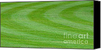 Mary Deal Canvas Prints - Golf Course Green Canvas Print by Mary Deal