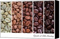 Espresso Canvas Prints - Grades of coffee roasting Canvas Print by Jane Rix