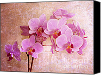 Digital Art Special Promotions - Grandmas Dream Orchid Canvas Print by Jutta Maria Pusl