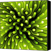 Sea Animals Mixed Media Canvas Prints - Green Sea Anemone Canvas Print by Anastasiya Malakhova